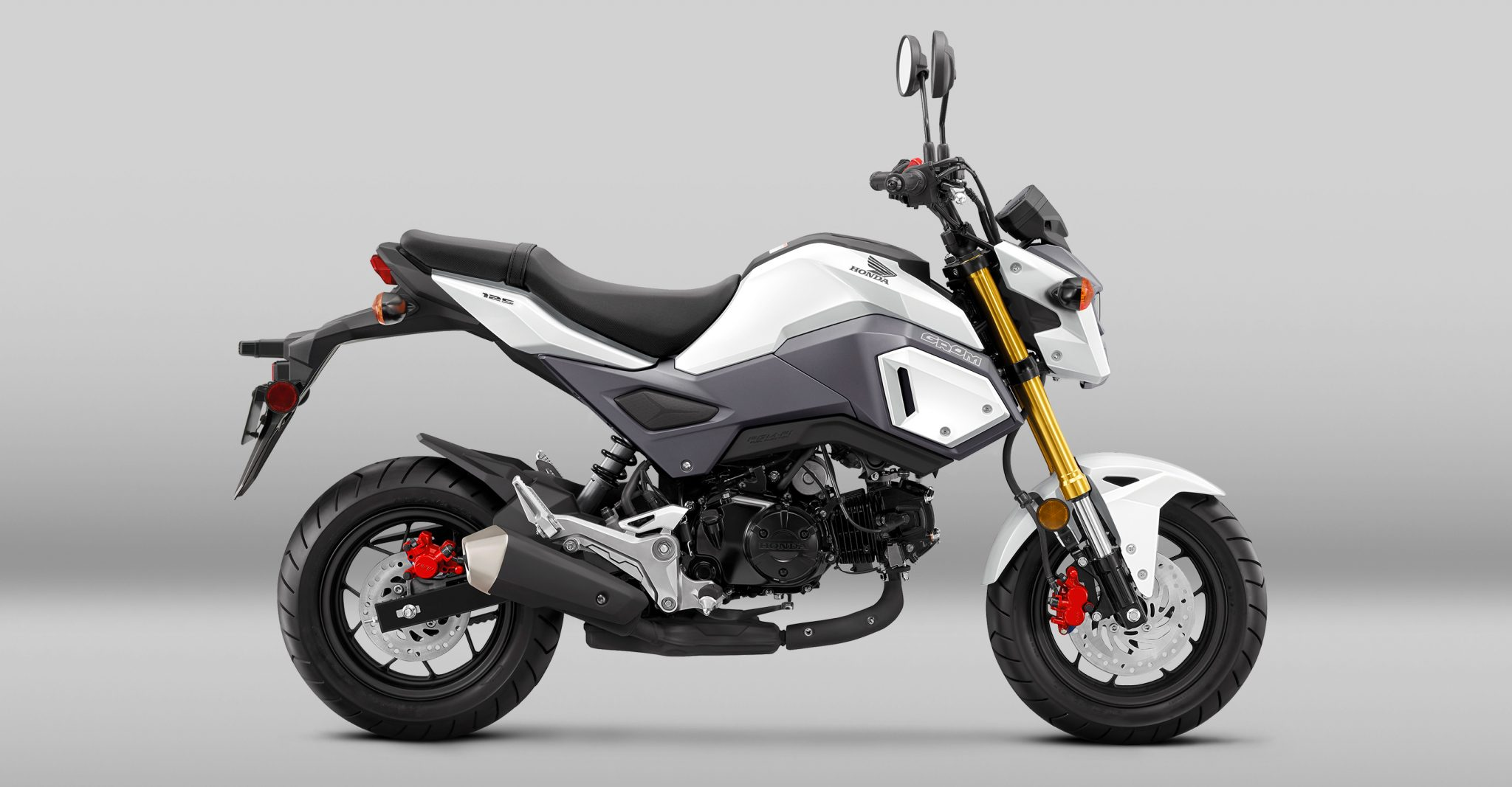 India to not launch Honda Grom and Scoopy Scooter?