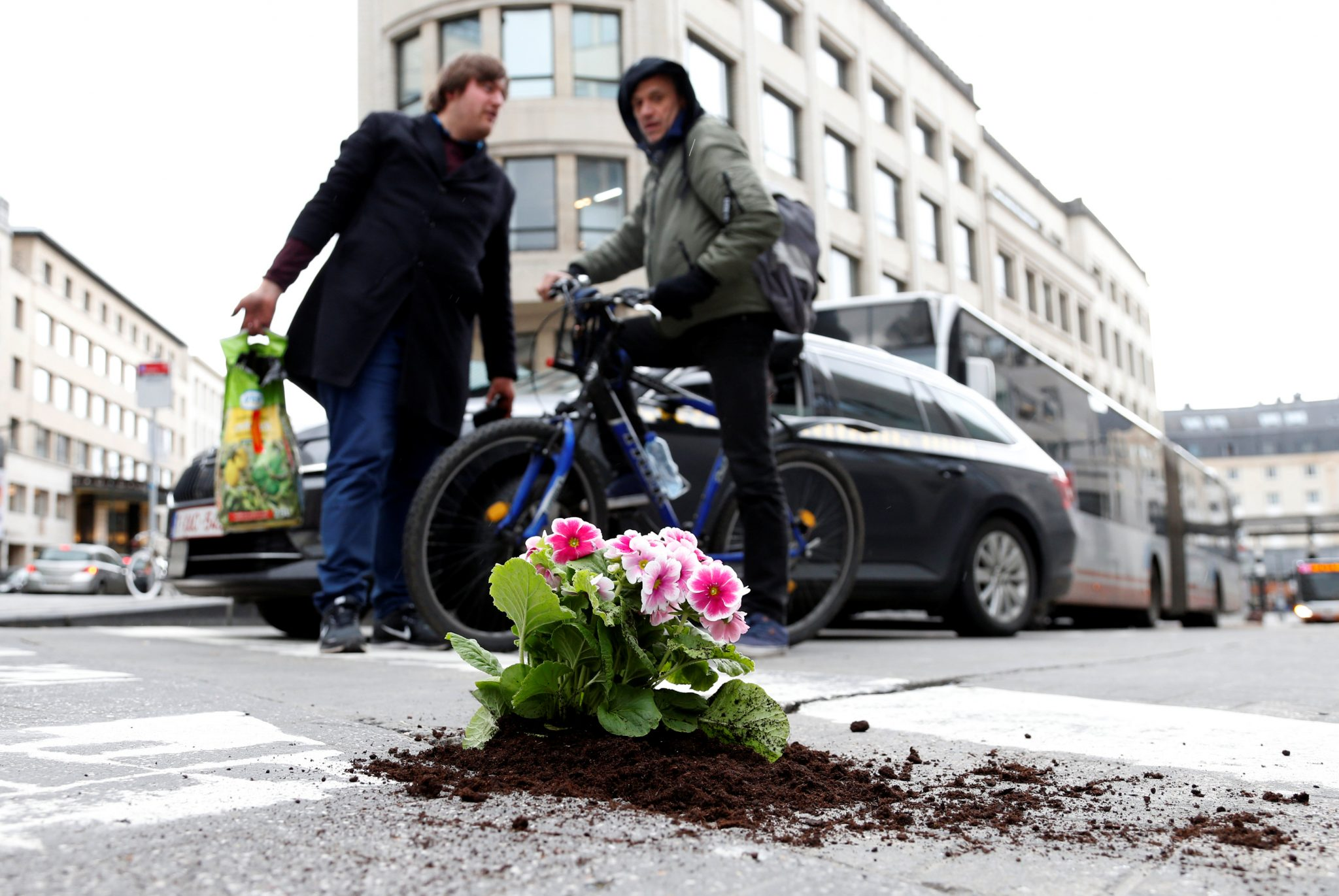 One man is fighting the potholes plague… with flowers!